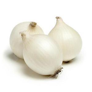 Насіння цибулі білої