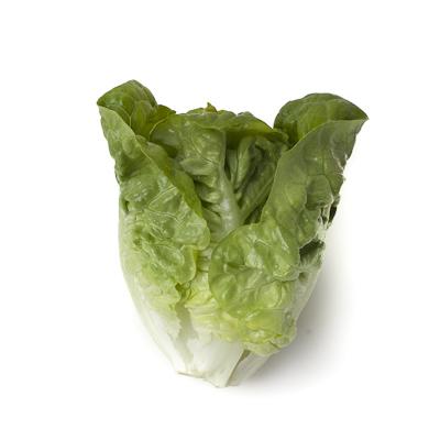 Насіння салату ромен Тудела (Tudela RZ)