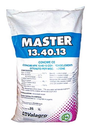 Master (Майстер) 13.40.13, 25 кг