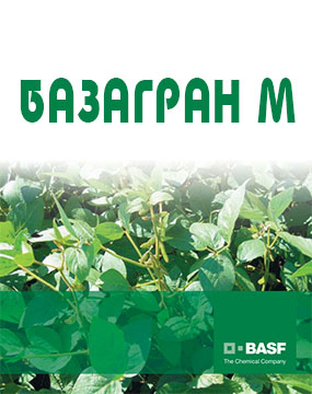 Базагран М, в.р.
