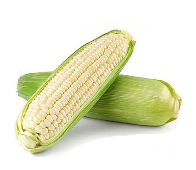 Насіння кукурудзи цукрової Андріївський F1 (середньоранній 76–81 днів)