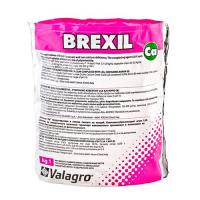 Brexil Ca (Брексил Кальцій)