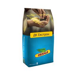 Насіння ріпаку озимого ДК Екстрон (DK EXTRON)