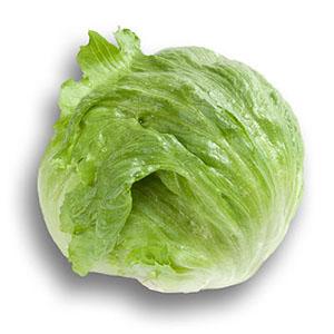 Насіння салату качанного Фіоретт (Fiorette)