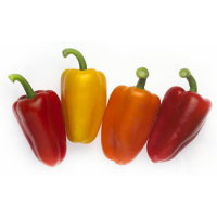 Насіння перцю солодкого Tріросо (Trirosso RZ) F1 міні-кубовидний тип, червоний