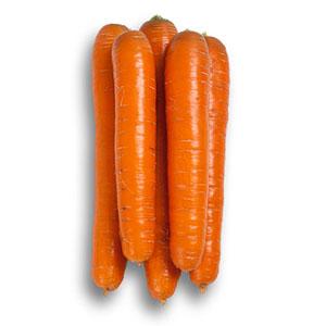 Насіння моркви Джерада (Jerada RZ) F1 Нантеc тип 90 дн.