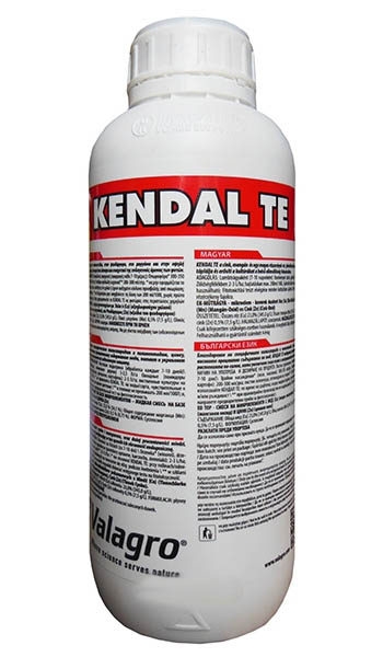 Kendal TE (Кендал ТЕ)